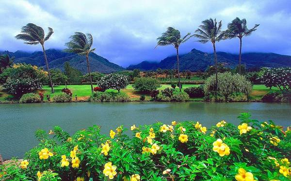 The beautiful island of Maui.